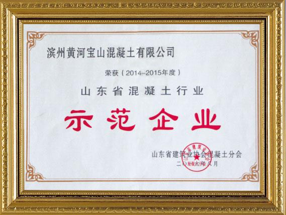 山東省混凝土行業示范企業